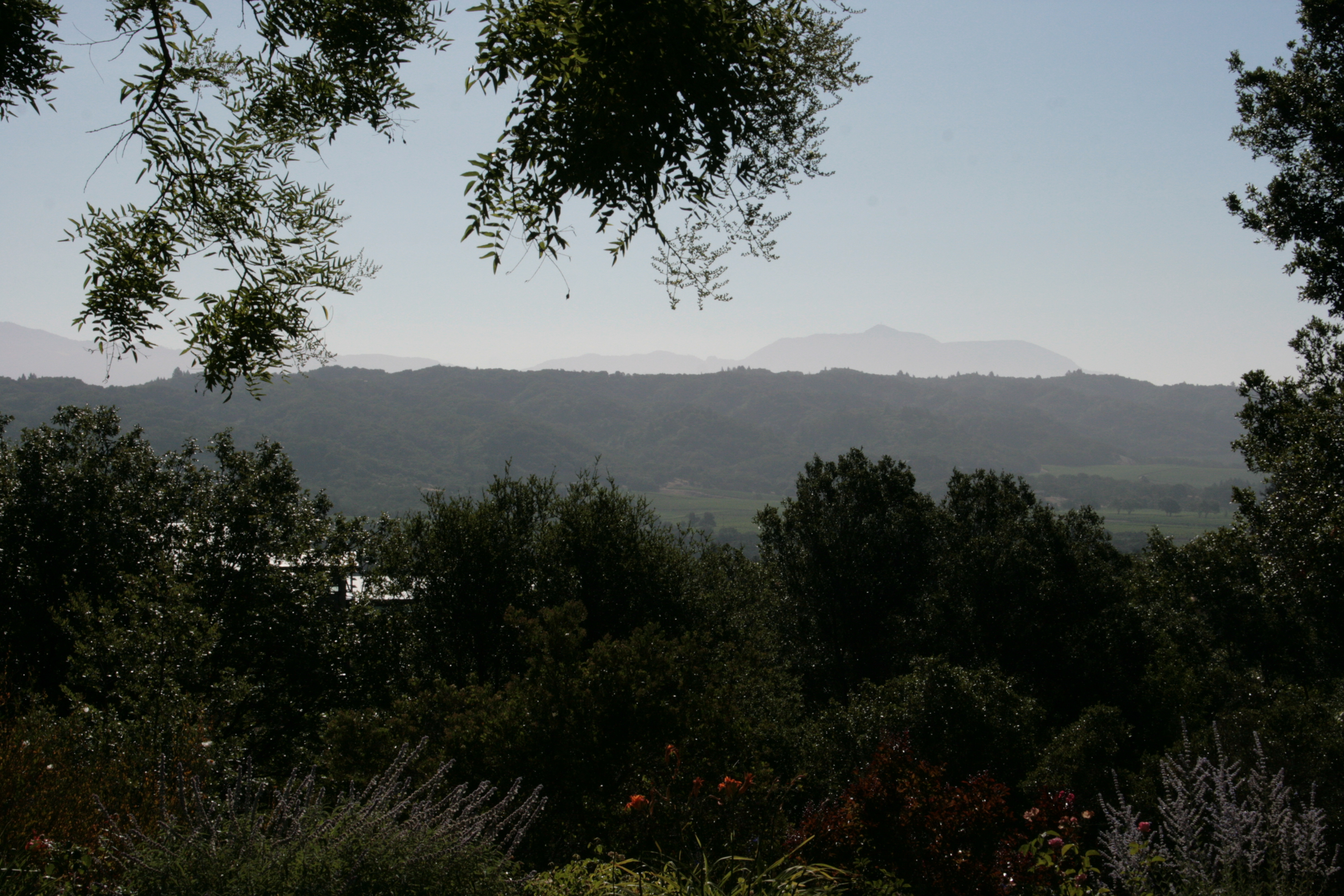 2013-07-05 10.37.00